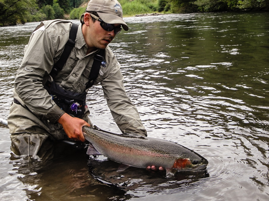 Washington fly fishing guides klickitat river steelhead for Fly fishing seattle