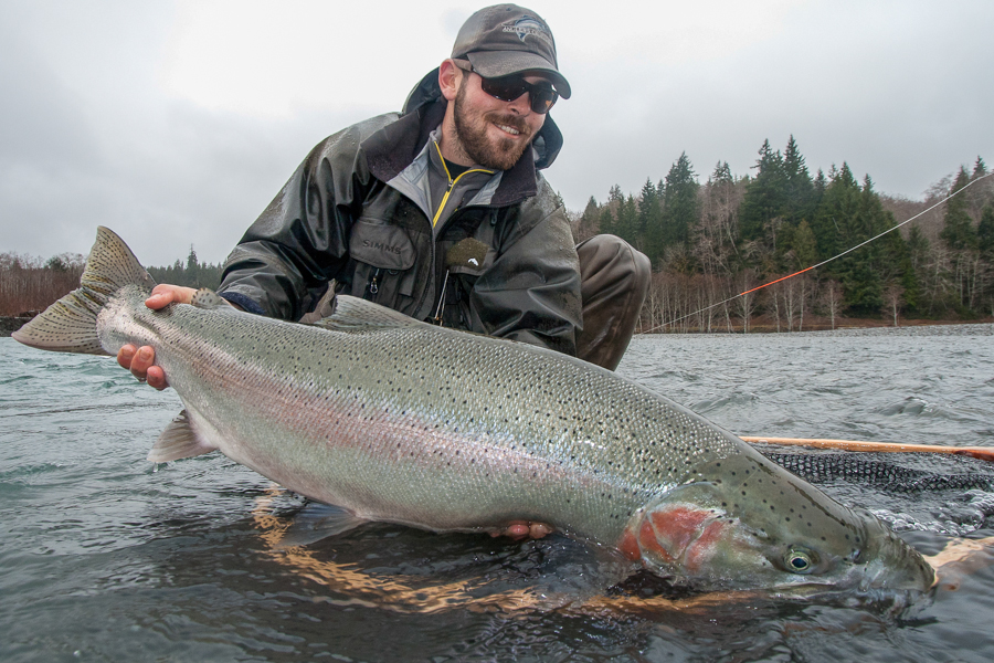 forks washington steelhead fly fishing gallery