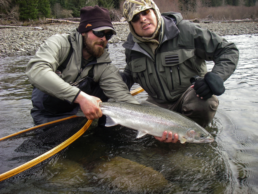Washington winter steelhead fly fishing guide forks wa for Seattle fishing guides