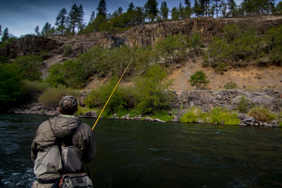Washington fly fishing guides klickitat river steelhead for Fishing guides washington state