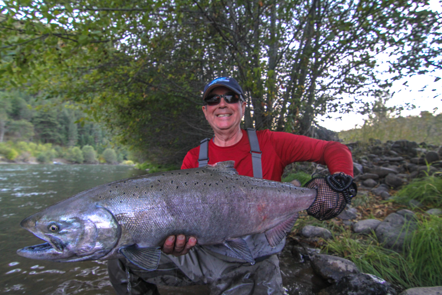 Summer steelhead archives for Fishing in seattle washington