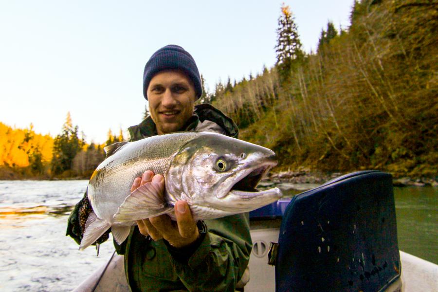 Fall Coho Salmon Fly Fishing - Forks Washington - Olympic Peninsula