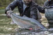washington_steelhead_fly_fishing_guide_olympic_peninsula_forks_wa-21