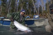 washington_steelhead_fly_fishing_guide_olympic_peninsula_forks_wa-26