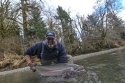 washington_steelhead_fly_fishing_guide_olympic_peninsula_forks_wa-27