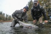 washington_steelhead_fly_fishing_guide_olympic_peninsula_forks_wa-30
