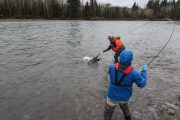 washington_steelhead_fly_fishing_guide_olympic_peninsula_forks_wa-41