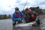 washington_steelhead_fly_fishing_guide_olympic_peninsula_forks_wa-42